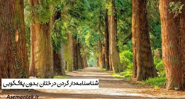 شناسنامهدار کردن درختان بدون پلاککوبی