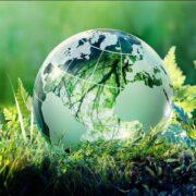 نقش پلاک کوبی درختان در حفظ محیط زیست